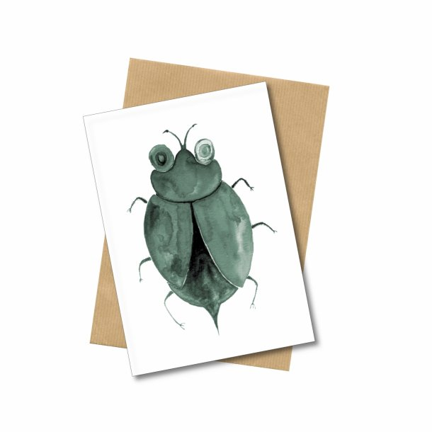 Free Gift! Insectum